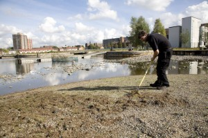 Maintaining Manchester's one and only beach